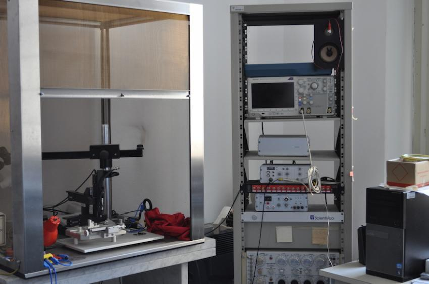 Set-up electrofisiologia 'in vivo'