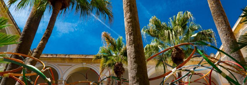ateneo di sassari chiostro piazza università palme installazione artistica cielo
